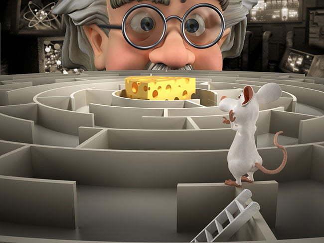 Navigating the Medicare Maze